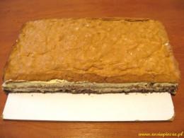 ciastor17